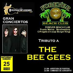 Bee Gees Tribute In Concert