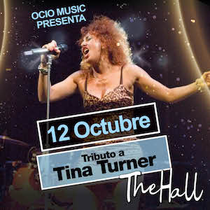 Tina Turner Tribute Show