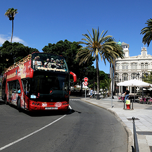 City Sightseeing Tour